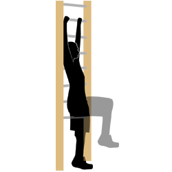 Fitnessgerät Sprossenwand